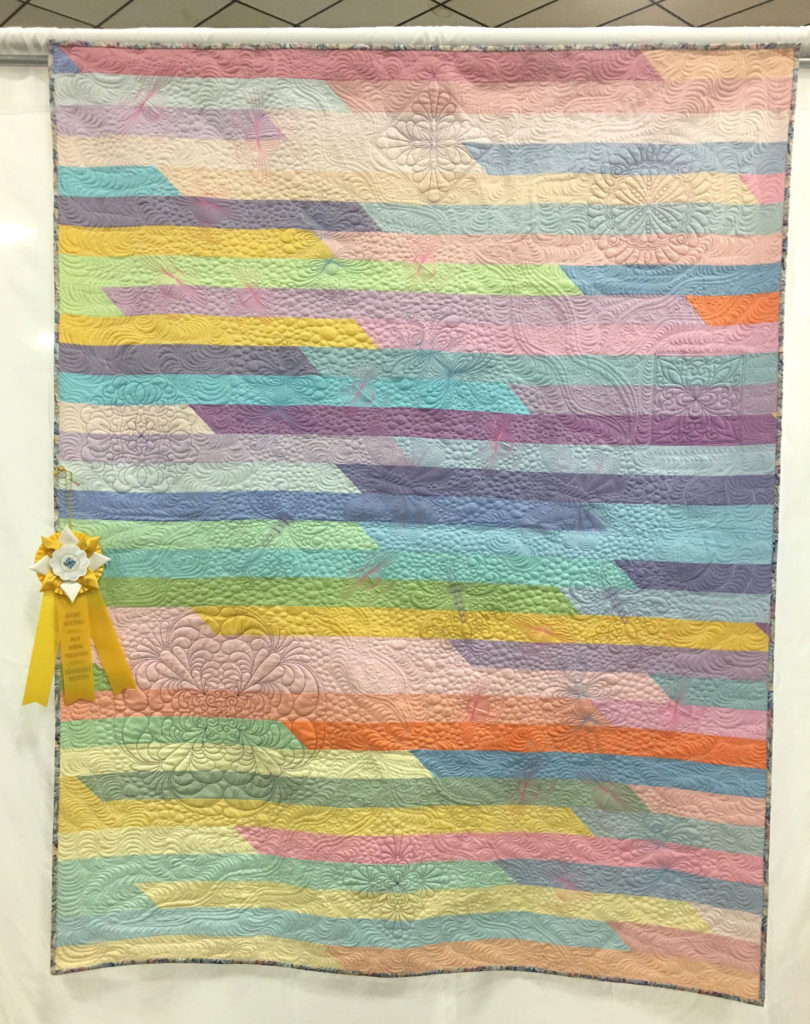 """511 """"Racing Bugs"""" by Jackie Heckathorn, HM Medium Individual Quilt, 2018 Kitsap Quilt Show"""